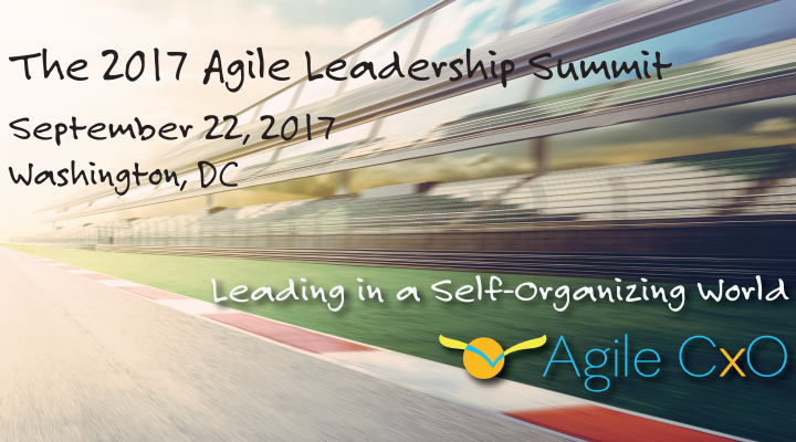 Technology Leaders Gather to Network and Learn about Agile Leadership at the 2017 Agile Leadership Summit in Washington, D.C.